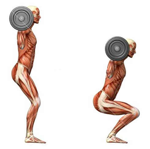 حرکات ورزشی با وزنه