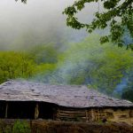 تصاویر جنگل النگدره 3