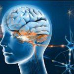 ارتباط ذهنی و تله پاتی