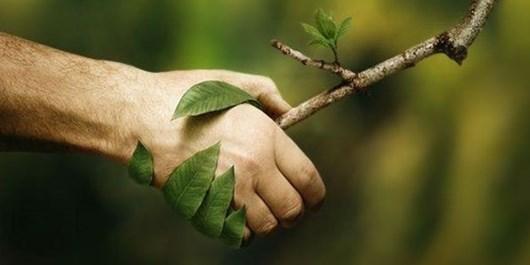 دوستی با طبیعت
