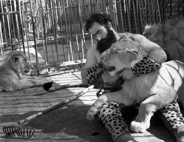 سیروس قهرمانی پهلوان شیرگیر ایرانی 8