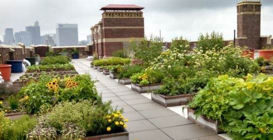 طراحی پشت بام طرح سبز