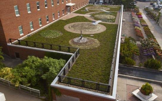 نمونه طراحی فضای سبز پشت بام مدل خلوت
