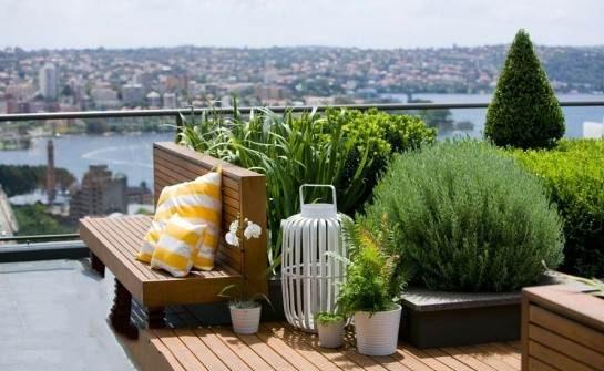 نمونه طراحی فضای سبز پشت بام مدل نمای باز