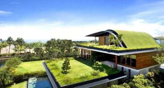 نمونه طراحی فضای سبز پشت بام نمای باز