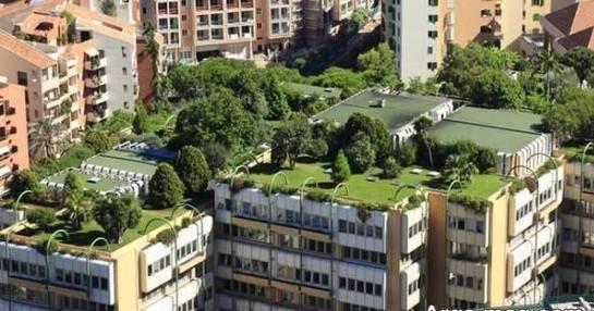 نمونه طراحی فضای سبز پشت بام نمای دور