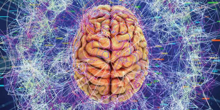 هماهنگ شدن امواج مغز. قابلیت مغز. درباره مغز