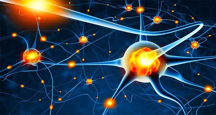 تقویت هوش تقویت هوش عقلانی تقویت ضریب هوشی