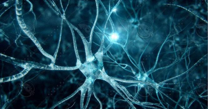 قدرت مغز قدرت تفکر هوش و ضریب هوشی