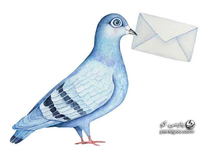 کبوتر نامه رسان و واکنش برنامه سلام صبح بخیر به سورپرایز وزیر ارتباطات