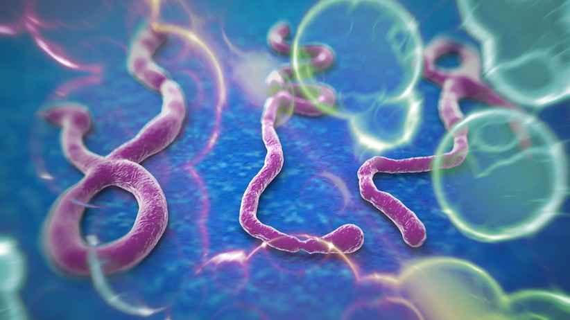 ویروس ابولا خطرناک و کشنده