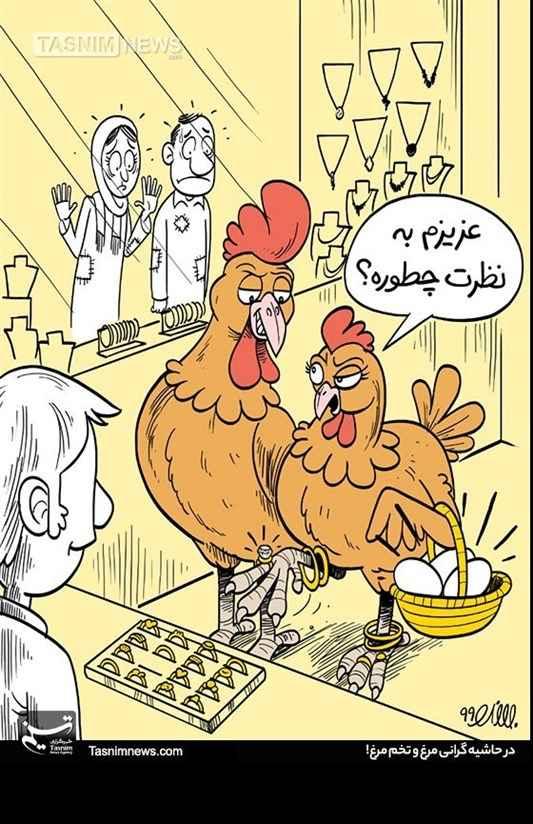 کاریکاتور درباره گرانی مرغ و تخم مرغ