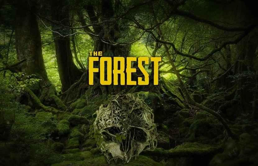 پوستر مرموز بازی The Forest بازی ترسناک